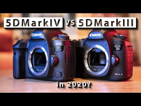 Cameras for Newbies and Dummies - DSLR and Lens Reviews