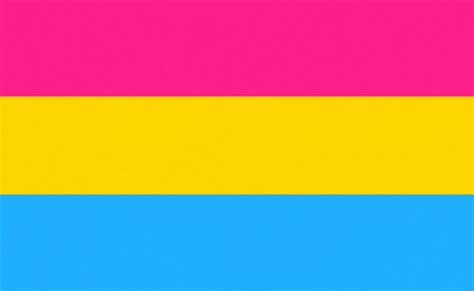 PANSEXUAL - 5 X 3 FLAG