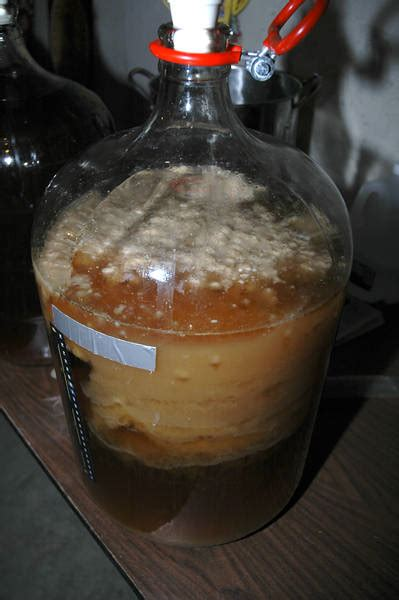Is it infected?   HomeBrewTalk