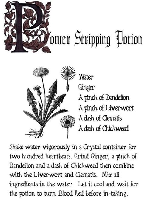 Charmed Series Book of Shadows: Power Stripping Potion